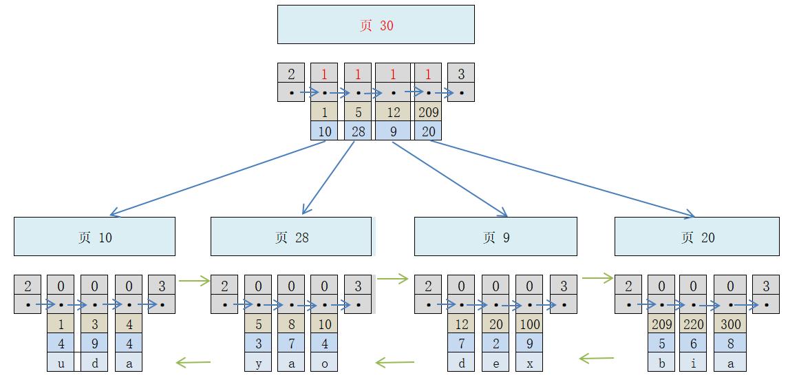 【Mysql】InnoDB 中的 B+ 樹索引