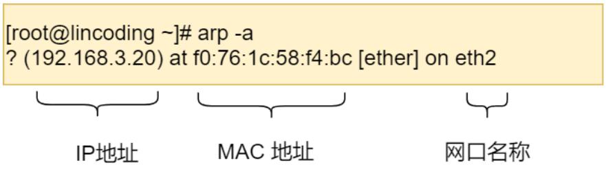 溫故知新-輸入網址-顯示網頁-到底到底到底到底-發生了什麼?