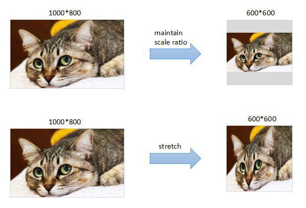 影像Resize方式對深度學習模型效果的影響