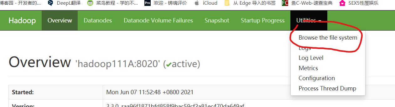 centOS 7-Hadoop3.3.0完全分散式部署