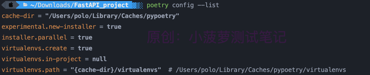 Python - poetry(3)配置項詳解