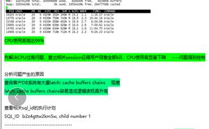記一次客戶DB CPU短時間內衝高至99%處理