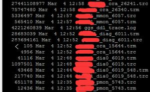 由OGG引發的資料庫故障
