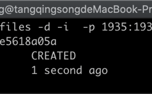 docker 中使用原始碼方式搭建 SRS 流媒體服務