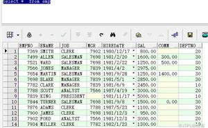 ORACLE 資料庫 查詢語句與DML語句
