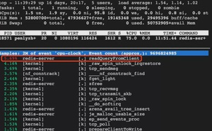 解碼Redis最易被忽視的CPU和記憶體佔用高問題