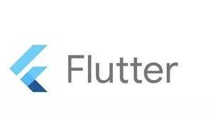 Flutter完整開發實戰詳解(二十、 Android  PlatformView 和鍵盤問題)