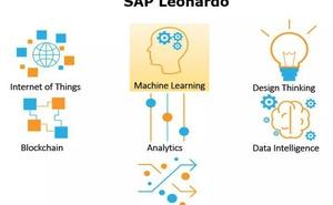SAP Leonardo圖片處理相關的機器學習服務在SAP智慧服務場景中的應用