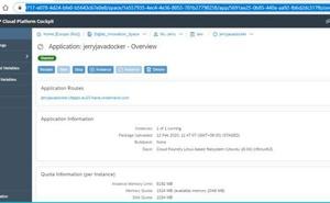 使用cf curl檢視SAP雲平臺上的應用各項明細