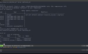 使用 Mux, Go, PostgreSQL, GORM 構建 API
