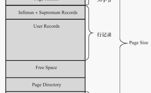 MySQL 執行原理【資料頁】