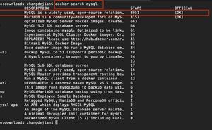 Docker 安裝 MySQL8.0
