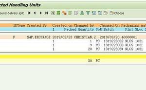 【SAP技術】SAP不能修改一個已經分配給交貨單的HU