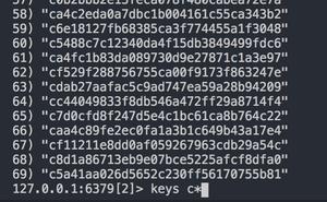 Redis 中使用 scan 替換 keys