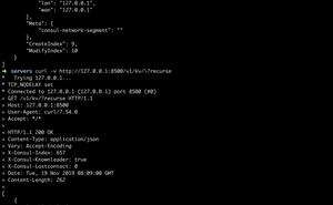 利用 consul+nginx-upsync 實現動態負載